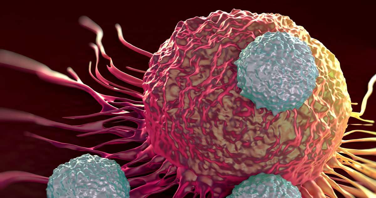T ćelije u odbrani od novog koronavirusa