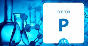 Neogranski fosfati značaj - Beo-lab